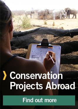 Conservation Projects Abroad
