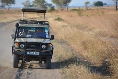 A Jeep conducts a game drive in a park in Kenya.