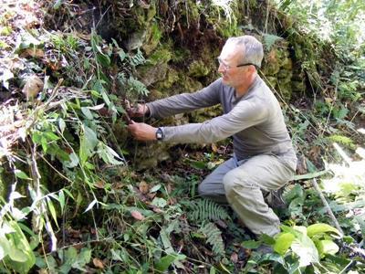 Volunteer on the Inca project, Peru