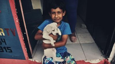 A child from the Galapagos holds onto his dog at one of the Projects Abroad care placements