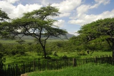 View from the Conservation project in Kenya