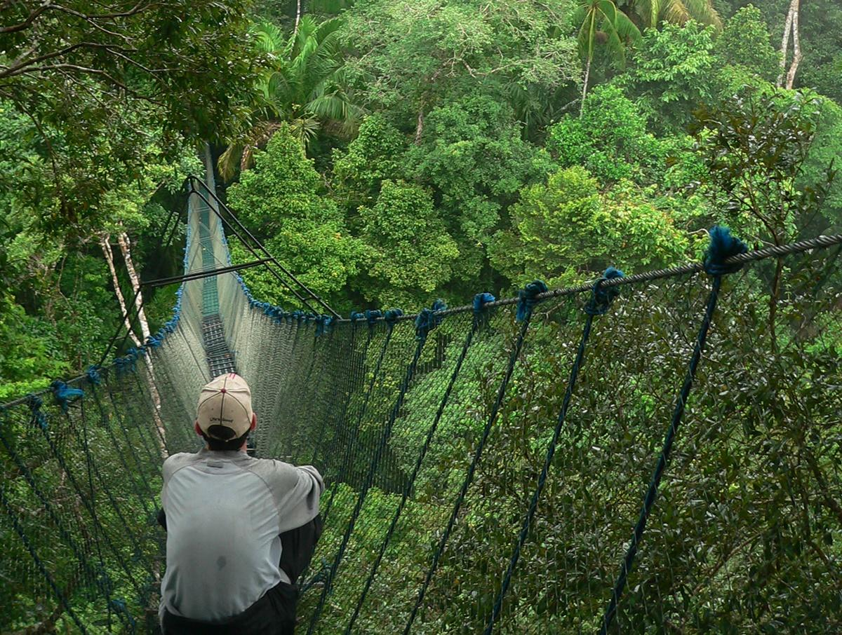 zoom Projects Abroad Conservation volunteer sitting on a canopy walkway in Peru & Volunteer Rainforest Conservation in Peru | Projects Abroad