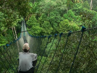Projects Abroad Conservation volunteer sitting on a canopy walkway in Peru