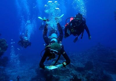 Volunteers on training dive as part of Divemaster course