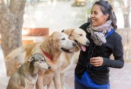 A volunteer interacts with dogs at a Canine Therapy placement in Cordoba