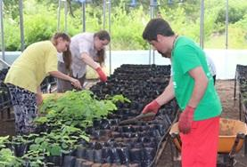Volunteers help with gardening work on a placement in Ecuador