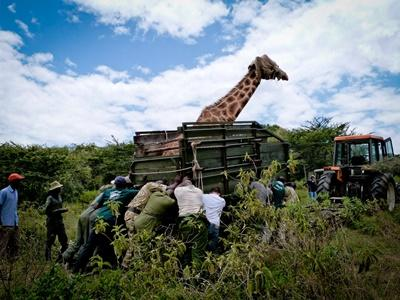 Conservation & Community in Kenya