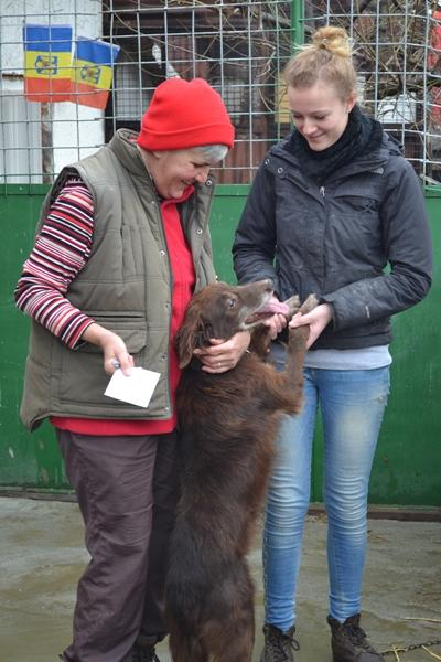 A volunteer and project manager in Romania play with a dog at their placement